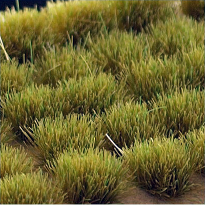 Dry Green Tufts (Gamer's Grass) Wild