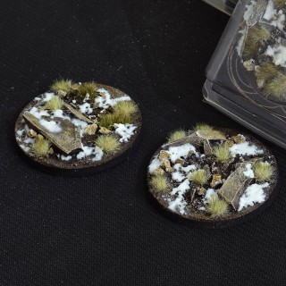 Winter Bases Round 60mm (Gamer's Grass) Pack of 2